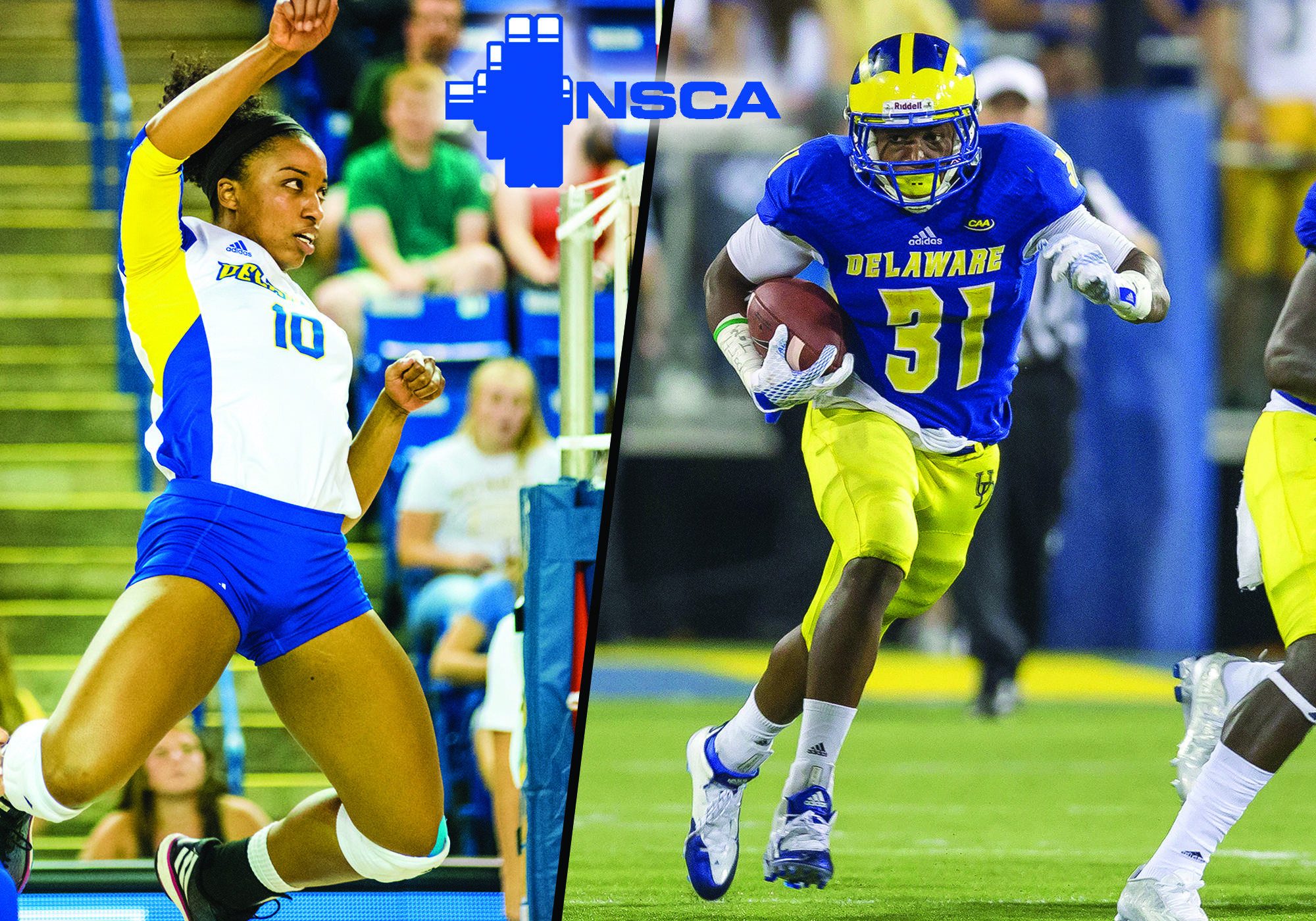 uk availability 198a0 dbd24 Wes Hills, Chandler Bryant Honored by National Strength ...
