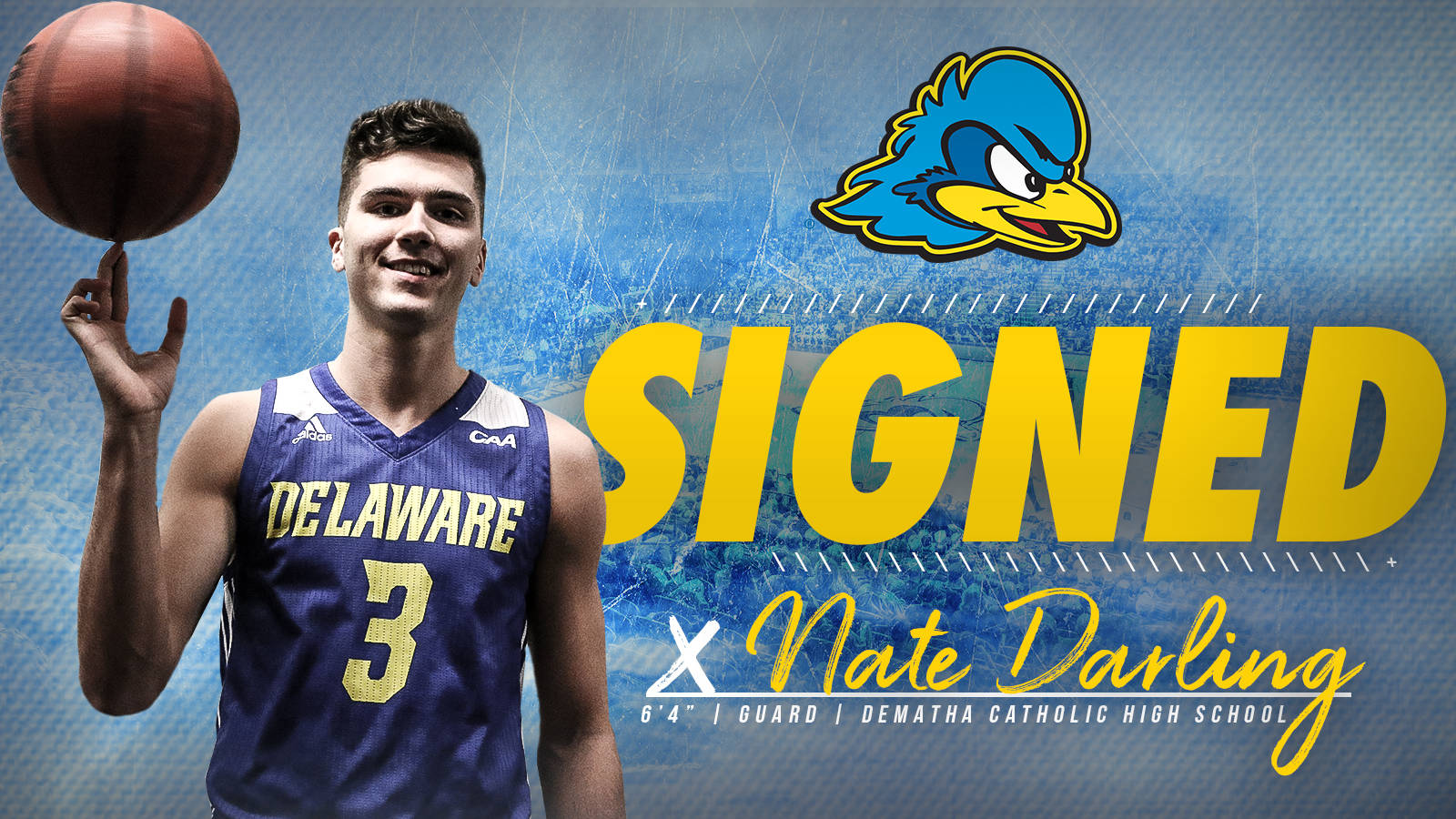 low priced d33d6 14285 Delaware Men's Basketball Adds UAB Transfer Nate Darling ...